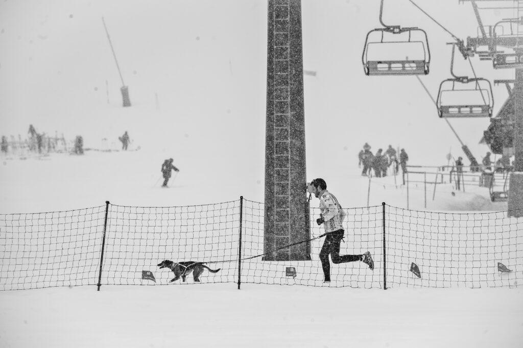 Corredor con su perro en la estación de esqui de Baqueira Veret campeonato de España